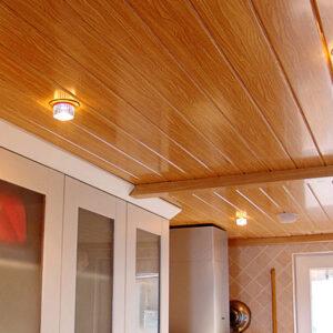 Ceiling Panels (PVC) NIBP10